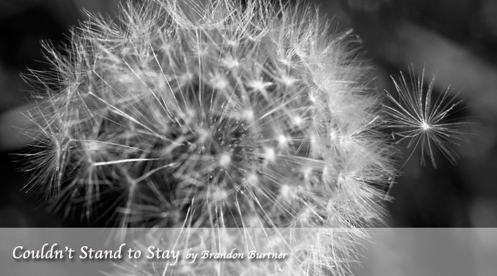 Couldn't Stand to Stay by Brandon Burtner
